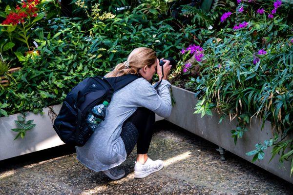 Gutschein für einen Workshop der Fotoschule Hannover