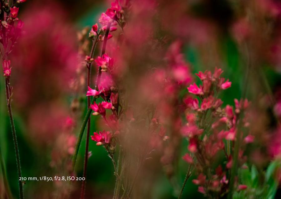 Mehr Fotopraxis